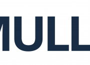 ESET/Eurosecure partners with Mullvad throughout entire Nordic region.