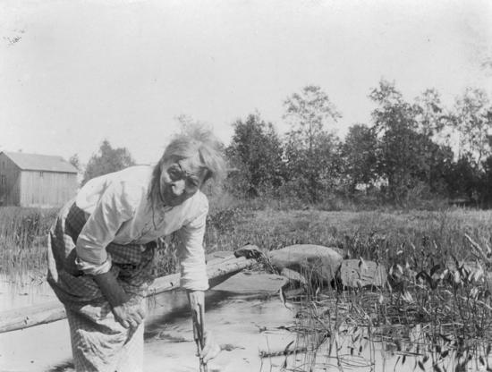 kajas-ann-bilder-sjoradet-1917.-foto-valter-w.-forsblom.-sls-sjukdomsbesvarjelser-och-omlagelser-fran-syd-osterbotten-v-ovriga.jpg